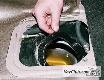 бане целлюлита от в рецепты меда